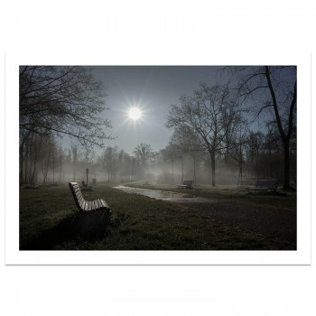 Early Morning | Monza Park | Photograph