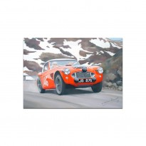 Austin Healey | Alpine Rally | Greetings Card