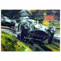 Raw Elegance | Aston Martin DBR3S | Aintree 1955 | Artwork